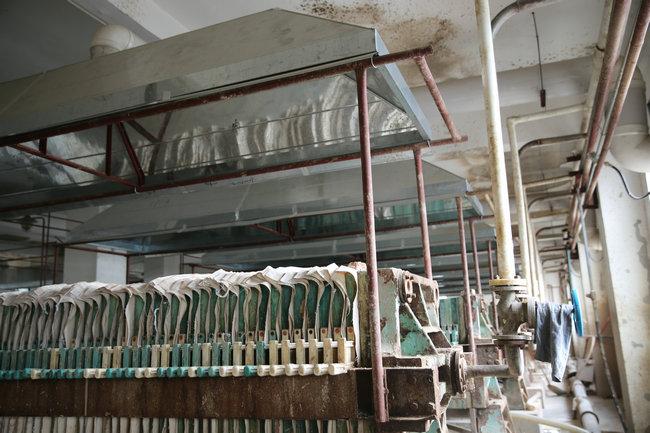 发酵板框工序气味收集装置